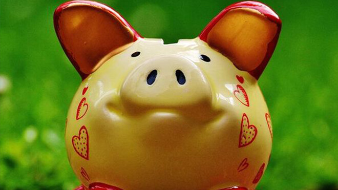 Piggy bank in a meadow